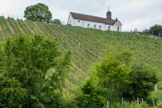 Kirchwingert