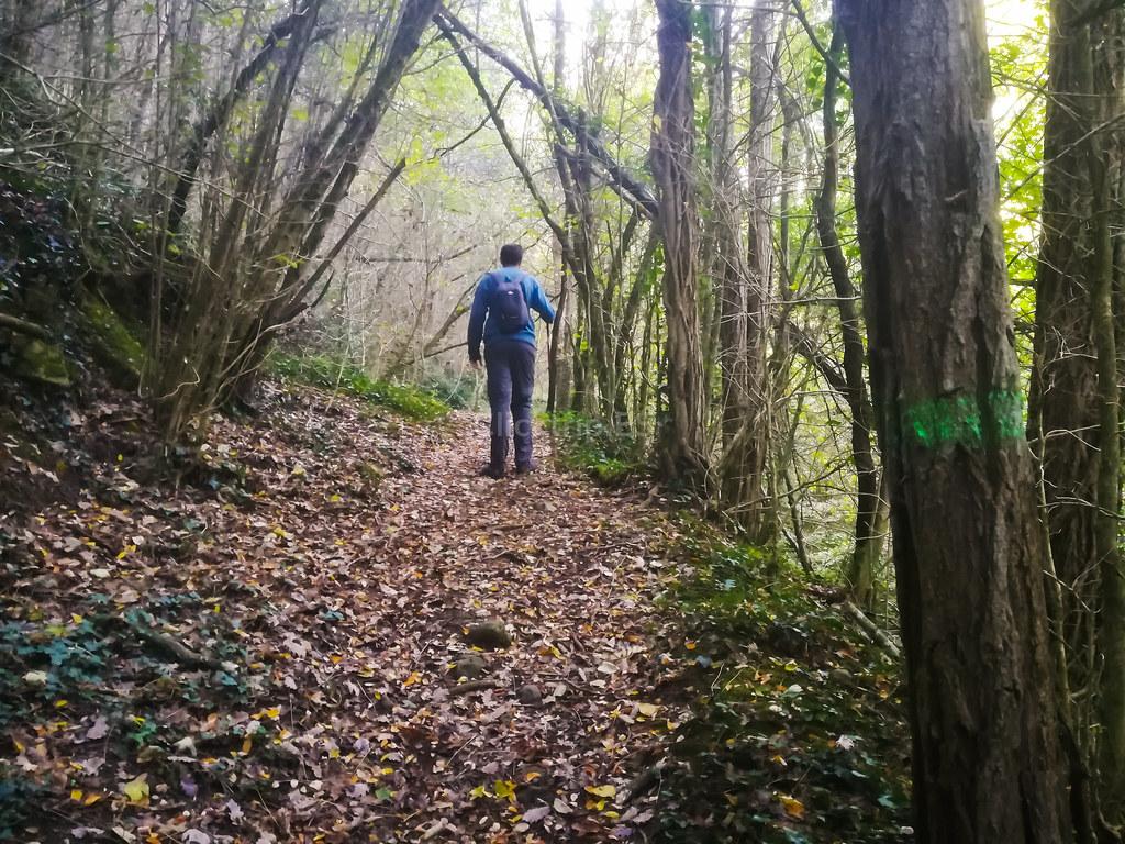 Font de les Fogoses - Excursión y Rutas por la Garrotxa · Cataluña