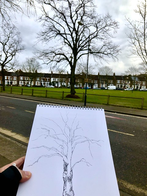 Trees of London