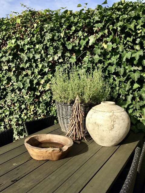 Tuintafel pot met plant kruik landelijke tuin