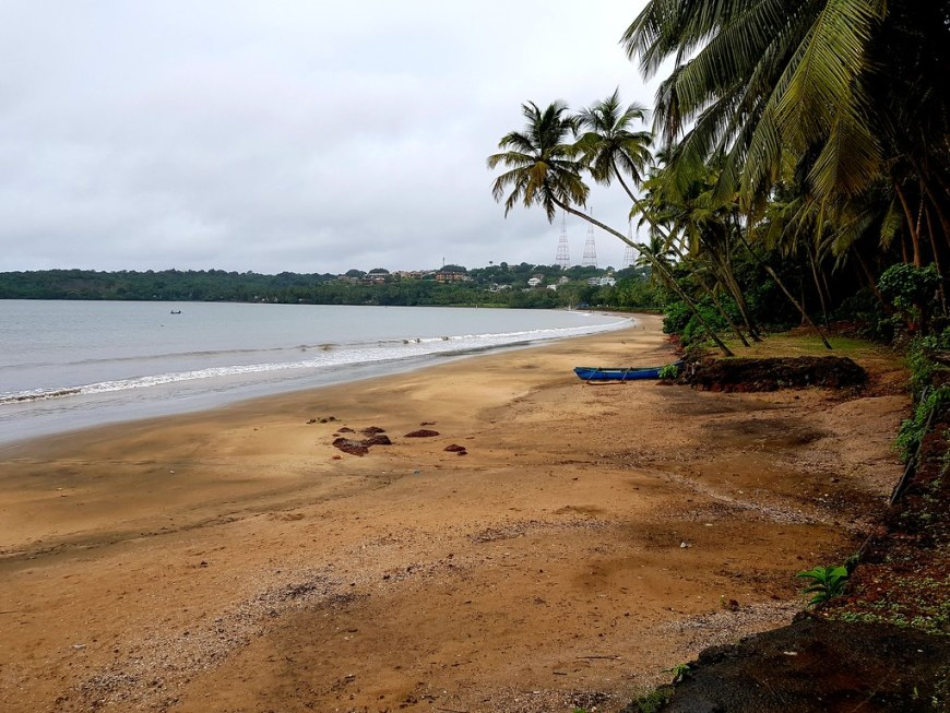 An empty beach on a cloudy day, with palm trees leaning towards the sea. There is a blue kayak on the shore, underneath the palm trees.