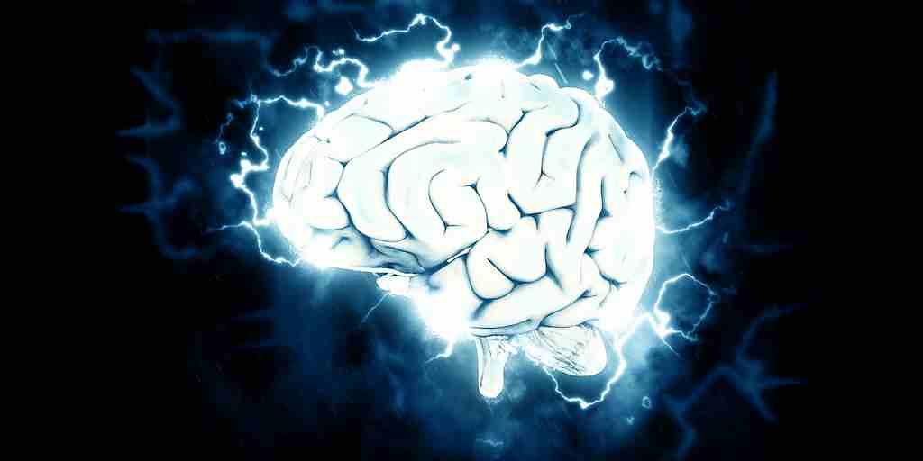 un-dysfonctionnement-de-la-barrière-hémato-encéphalique-serait responsable-du-déclin-cognitif
