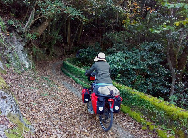 Another unexpected (and great!) cycle path in Japan by bryandkeith on flickr