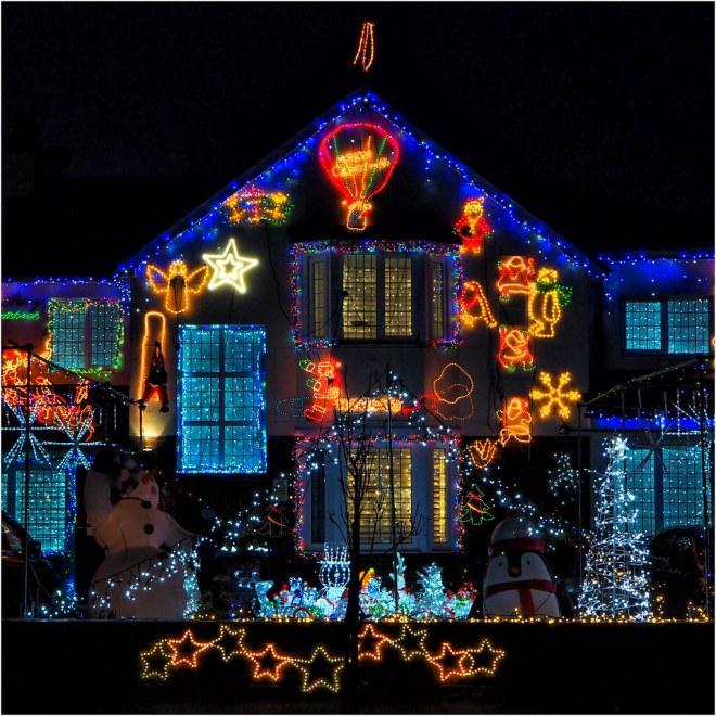 December - Festive season (12 of 12)