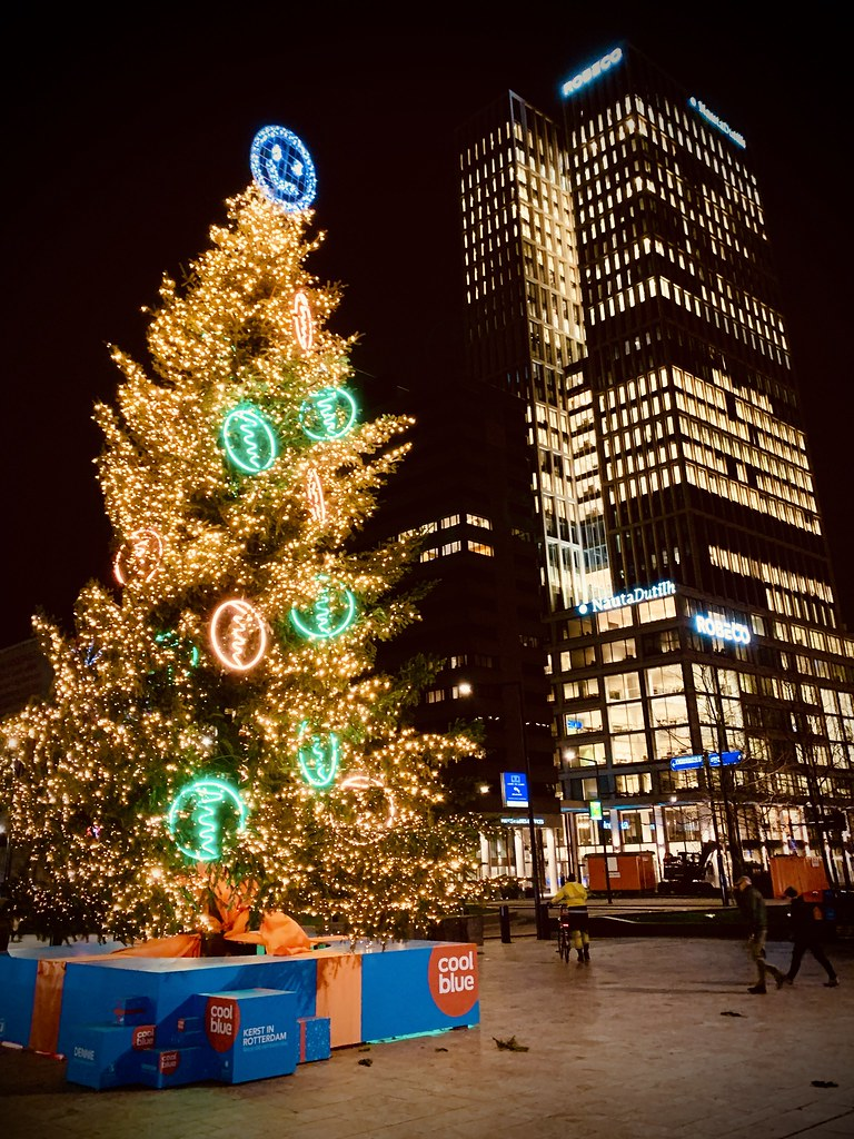 Rotterdam Daily Photo: Festive light twins
