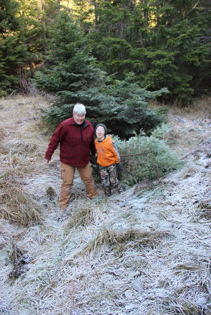 201912_Olympic_Grandmother and grandson pose with thier holiday tree.