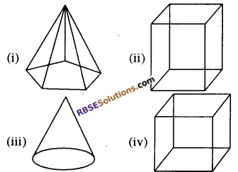 RBSE Solutions for Class 8 Maths Chapter 8 ठोस आकारों का चित्रण Ex 8.2 Q3b