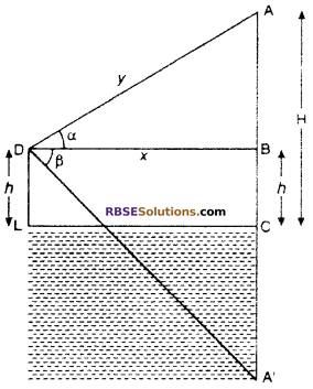 RBSE Solutions for Class 10 Maths Chapter 8 Height and Distance Additional Questions 47