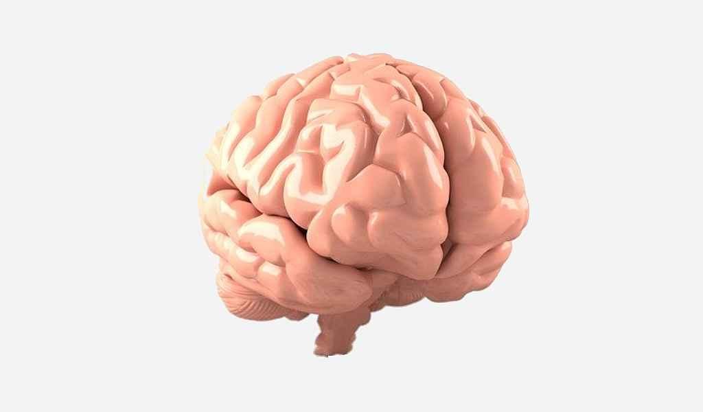 une-nouvelle-protéine-pourrait-jouer-un-rôle-dans-la-pathogenèse-de-la-maladie-Alzheimer