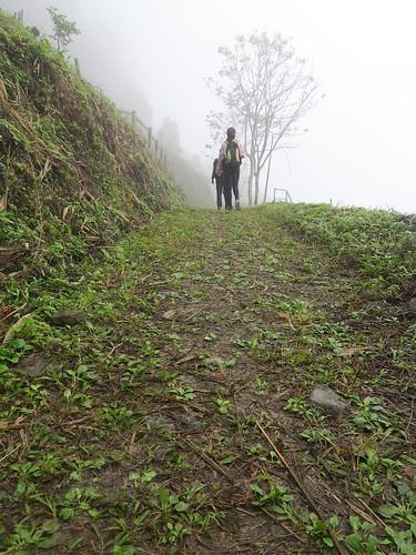 【爬山】2020元旦:小百岳NO.67 台南竹仔尖山(15.5ys)