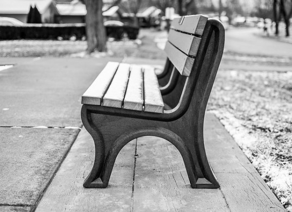 "DSC_0428-1-2      ~ ""#TREVOR CARPENTER PHOTO CHALLENGE 2019"" .... ~  ~ ""Week #3"" - ""PARK BENCH"" -   2020  ~"
