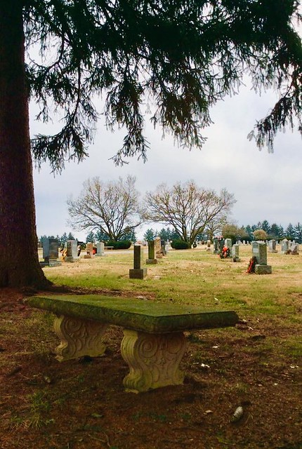 Photochallenge Week 3 -  Park Bench Photography - Lincoln Cemetery