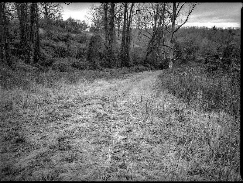 winter landscape, dirt roadway, Biltmore Estate, Asheville, NC, Mamiya 645 Pro, Kodak Tri-X 400, Moersch Eco film developer, 1.10.19
