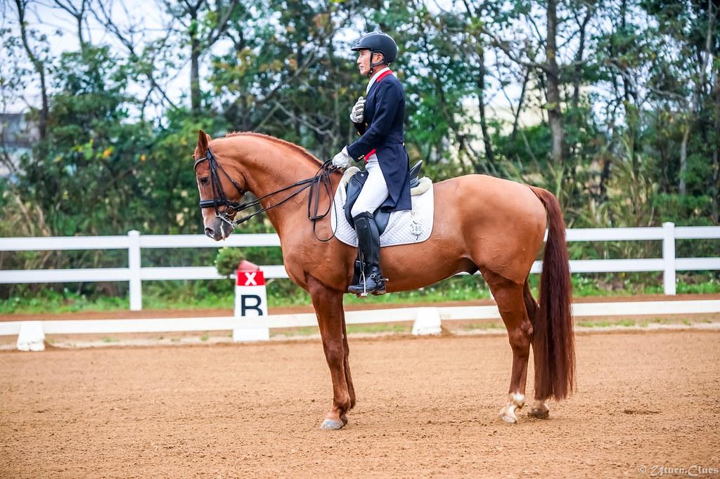 2020年全國馬場馬術錦標賽積分第1站暨小騎士馬術挑戰賽-Intermediate I   Flickr