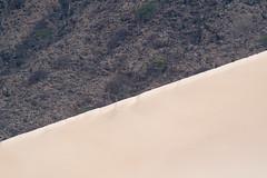 Socotra - -1-5