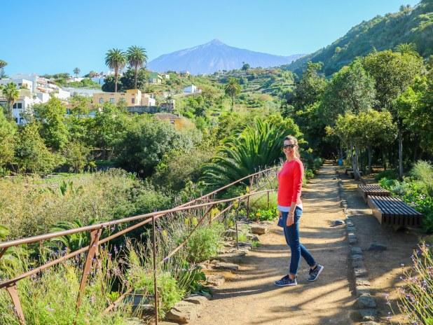 Vista del Teide desde el Parque del Drago en Icod de los Vinos