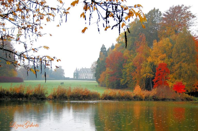 Misty and Dreamy Château!....