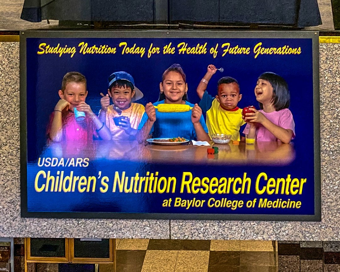 My Public Comments to the US Department of Agriculture Dietary Guidelines Advisory Committee Meeting 4, Jan 24, 2020, Houston TX, USA