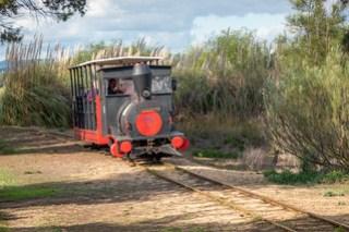 Zug über den Damm