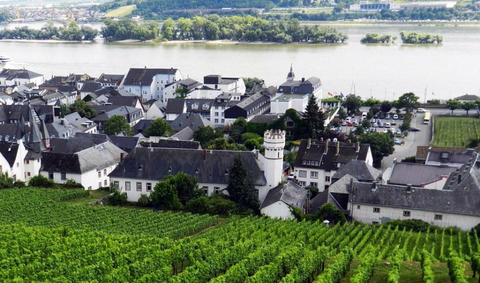 vista desde telesilla de Rudesheim Valle del Rin Alemania