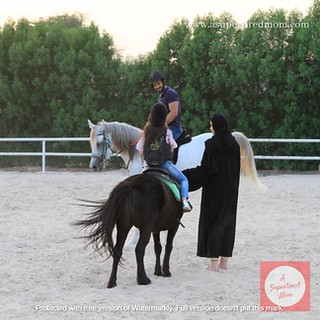 Equestrian  (2)