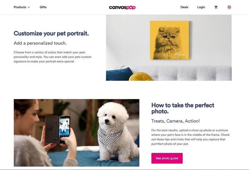 pet canvass