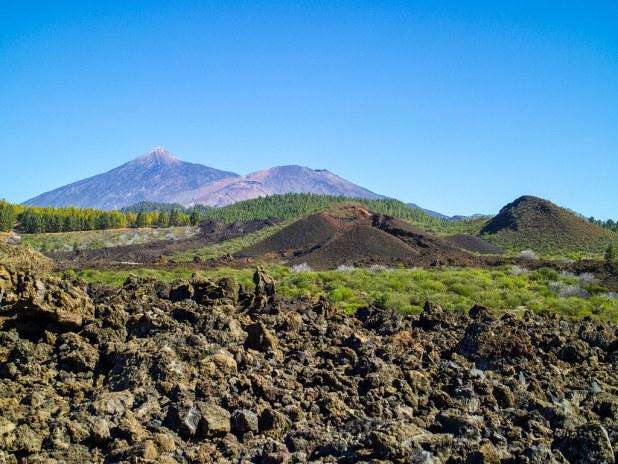 Volcanes en la ruta de los almendros en flor en Tenerife