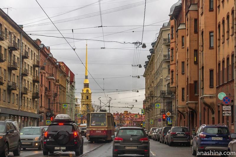 Проспект Добролюбова, Санкт-Петербург