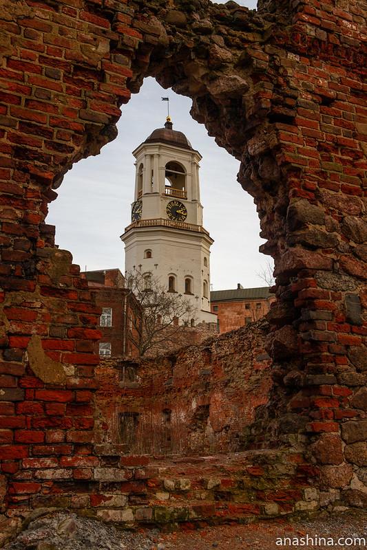 Выборг, Часовая башня и руины старого кафедрального собора