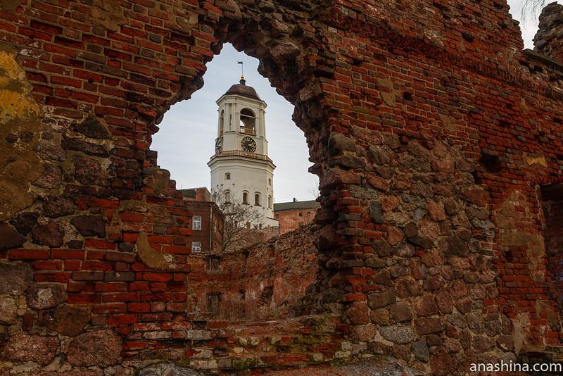 Руины Старого Кафедрального собора и Часовая башня, Выборг
