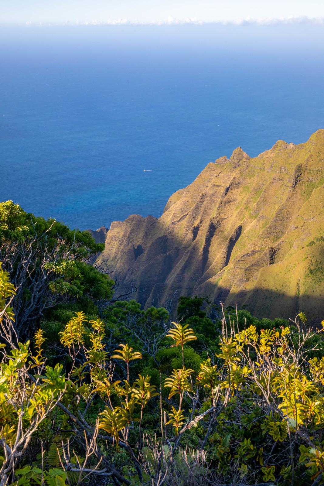 11.24. Kauai