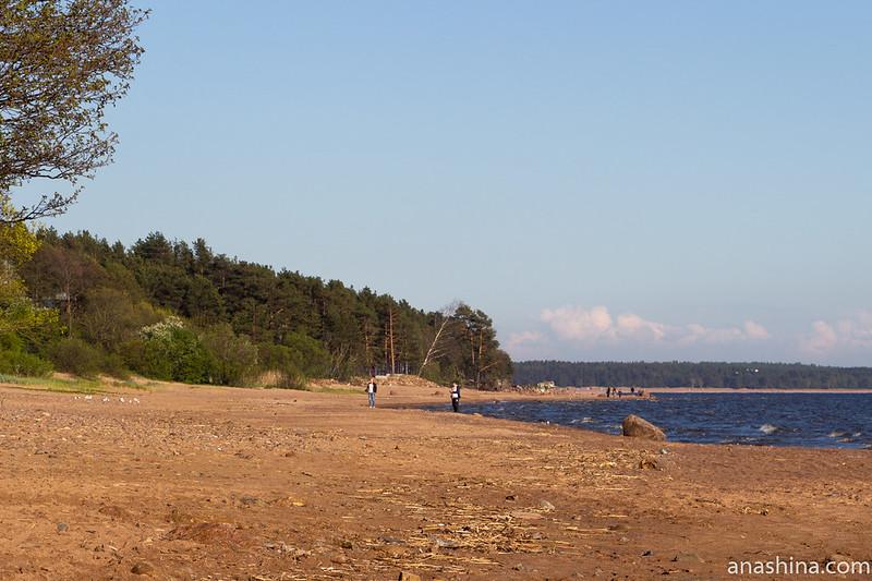 Берег Финского залива в Репино