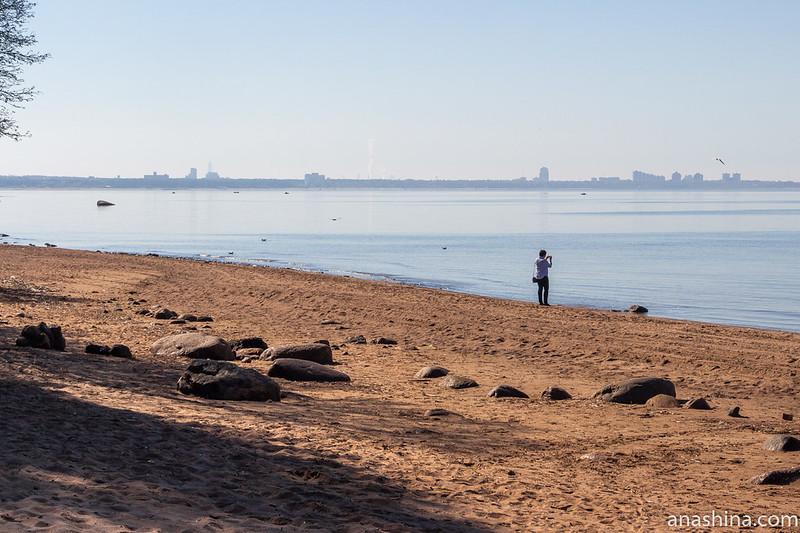 Репино, Финский залив, Сестрорецк