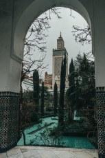 Grande_Mosquée-15