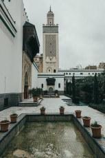 Grande_Mosquée-9