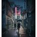 Alley Encounter