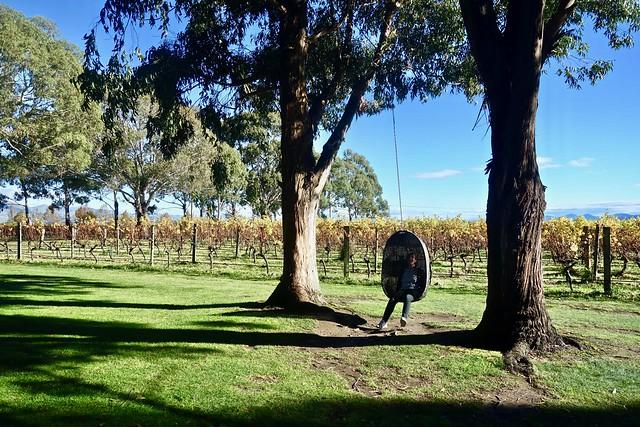 Wine tour in Nuova Zelanda