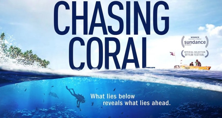 Chasing-Coral-Profile
