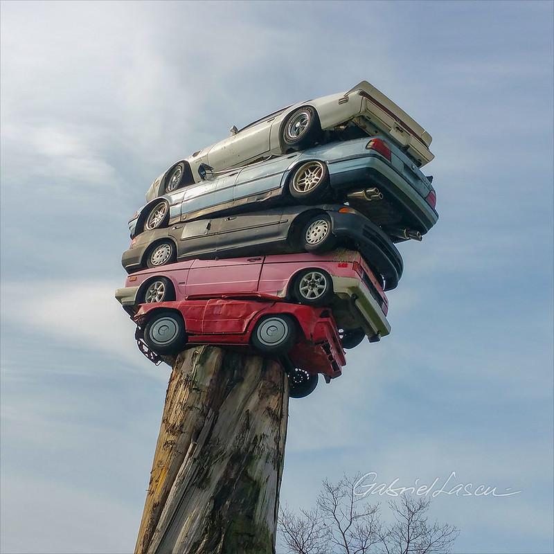 Car Tree