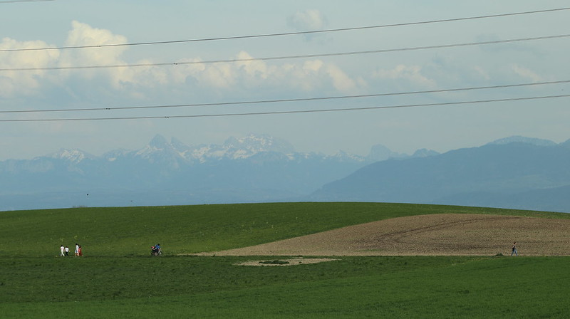 People walking during the 2020 Pandemic in the Canton de Vaud, with the Alps in the background
