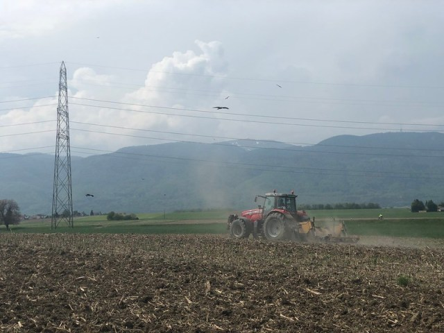 Agriculture during COVID-19