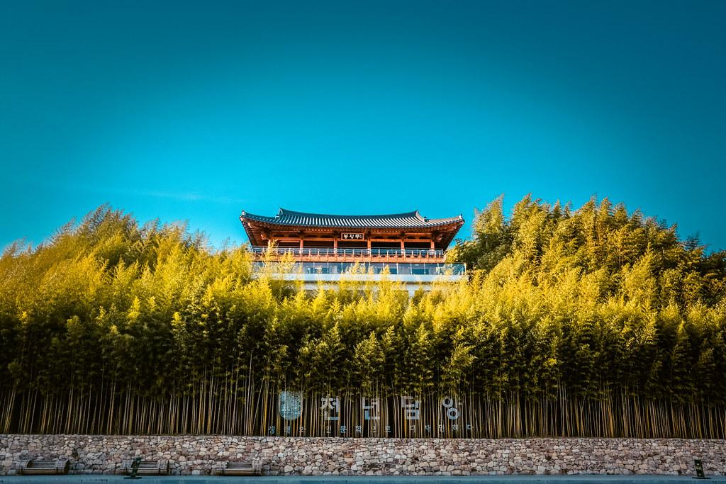 Jungnogwon Bamboo Park
