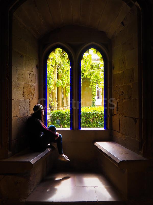 Interior Castillo de Olite · Qué visitar, ver y hacer en Navarra · Turismo de Navarra - ClickTrip