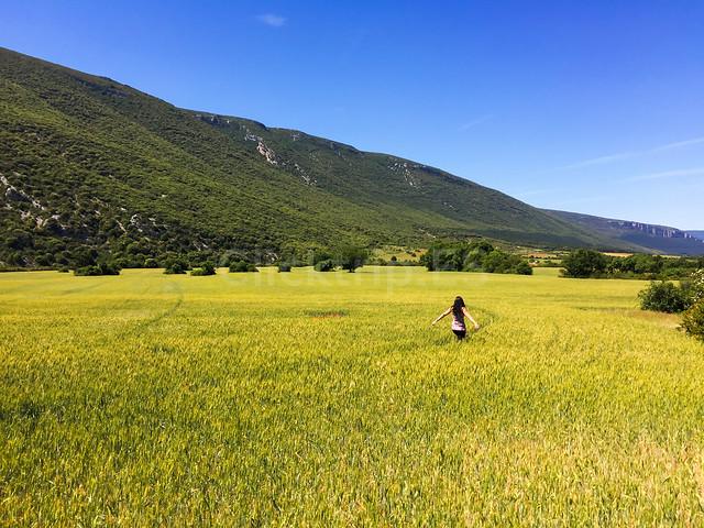 Ruta y cómo llegar a la Foz de Arbayún_ClickTrip