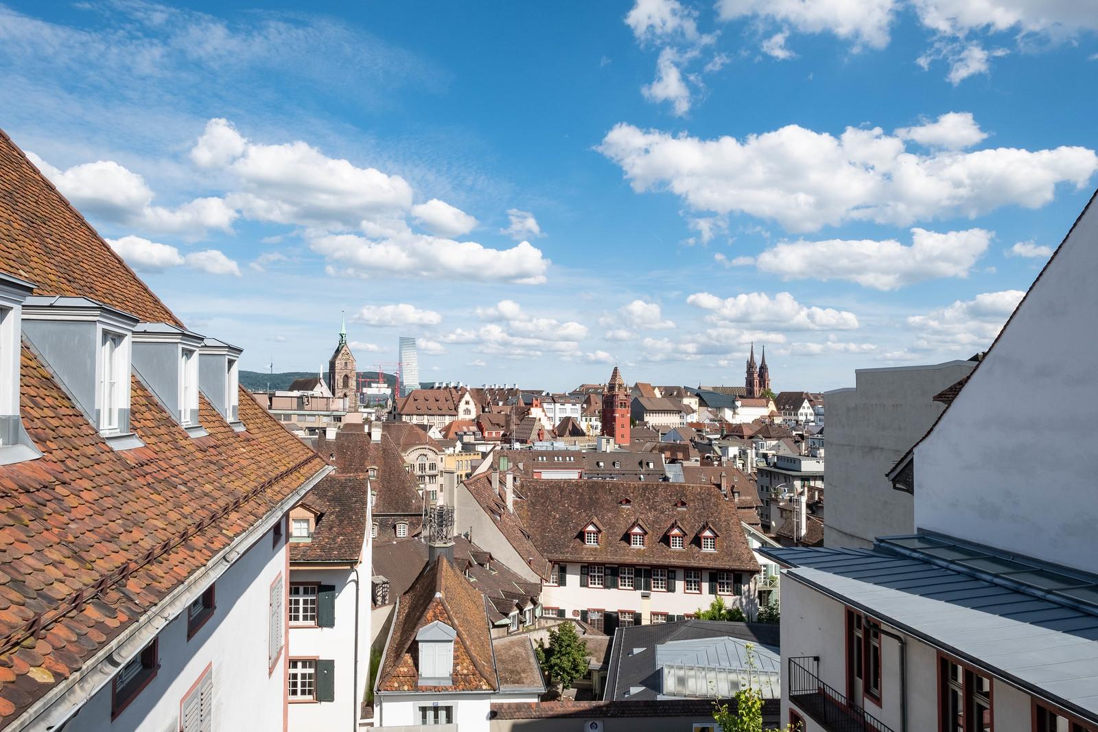 Basel vom Engelhof