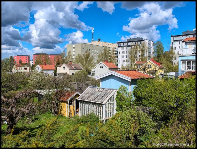 200512-001 - Svedmyra