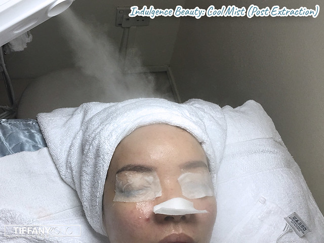 Indulgence Beauty Facial Review Cool Mist
