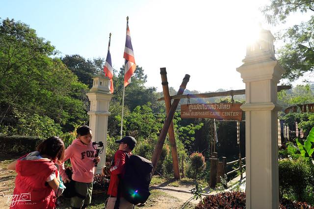 EpiphanyGoChiangmai Maesa Elephant Camp Group