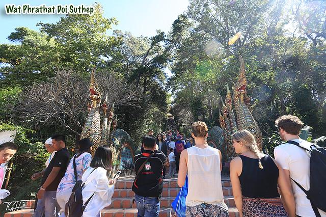 Wat Phrathat Doi Suthep Chiang Mai Local Tours