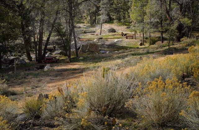 Chimney Creek Campground